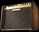 Fishman Acoustic