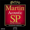 Martin Acoustic MSP