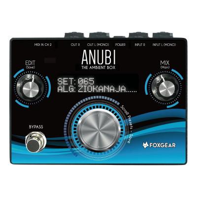 Foxgear Anubi Ambient Box Stereo Reverb Engine