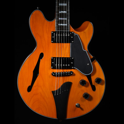 Fret King FKV3JE Black Label, Elise 'JE' John Etheridge