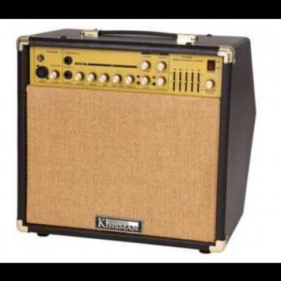 Kinsman 50 Watt Acoustic Combo with chorus KAA50