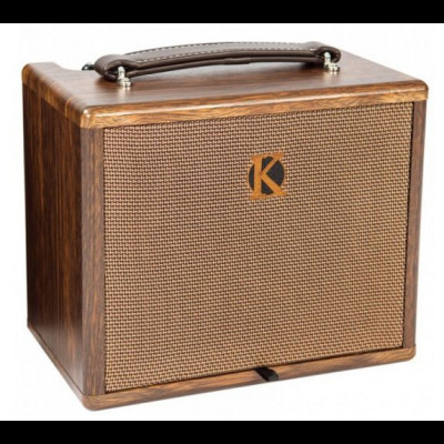Kinsman 25W Acoustic Amplifier with Chorus ~ Mains / Battery Powered