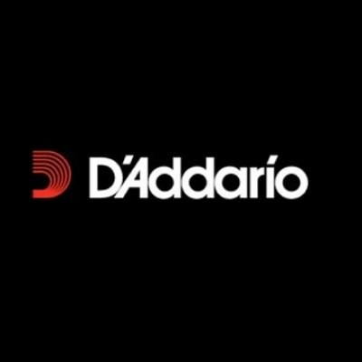 Daddario BASS String