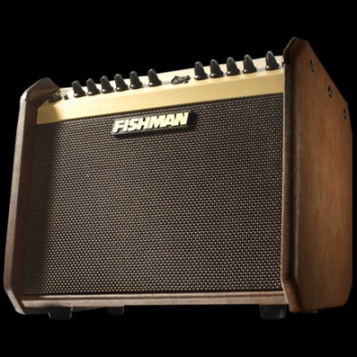 Fishman Pro LBX 500 Loudbox Mini Acoustic Amplifier