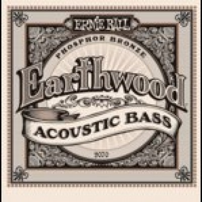 Earthwood Acoustic Bass
