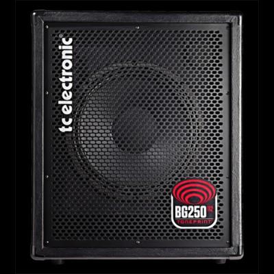 BG 250-112, Bass Amp