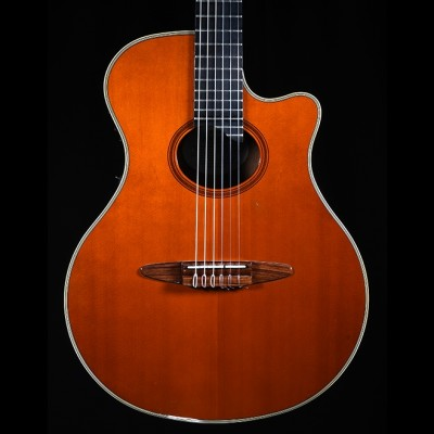 Yamaha APX10-N Nylon Electro Acoustic Guitar (Stereo)