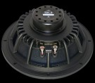 "SICA 10"" 250 watt Bass speaker"
