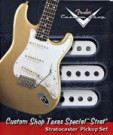 Custom Shop Texas Special Stratocaster Pickups