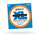 D'Addario EXL110-7 Regular Light 7-String