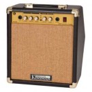 KAA25 Acoustic Combo