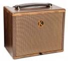 Kinsman KAA25 25W Acoustic Amplifier (AC/Battery Powered)