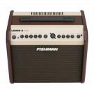 Loudbox Mini Acoustic Guitar Combo Amplifier