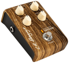 LR Baggs  Align Session Saturation Compression Acoustic Pedal