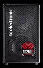 BG250-208 2x8 Bass Combo