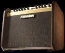 Pro LBX 500 Loudbox Mini Acoustic Amplifier