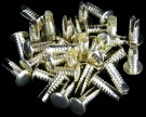 Silver Rivets (Pack of 100)